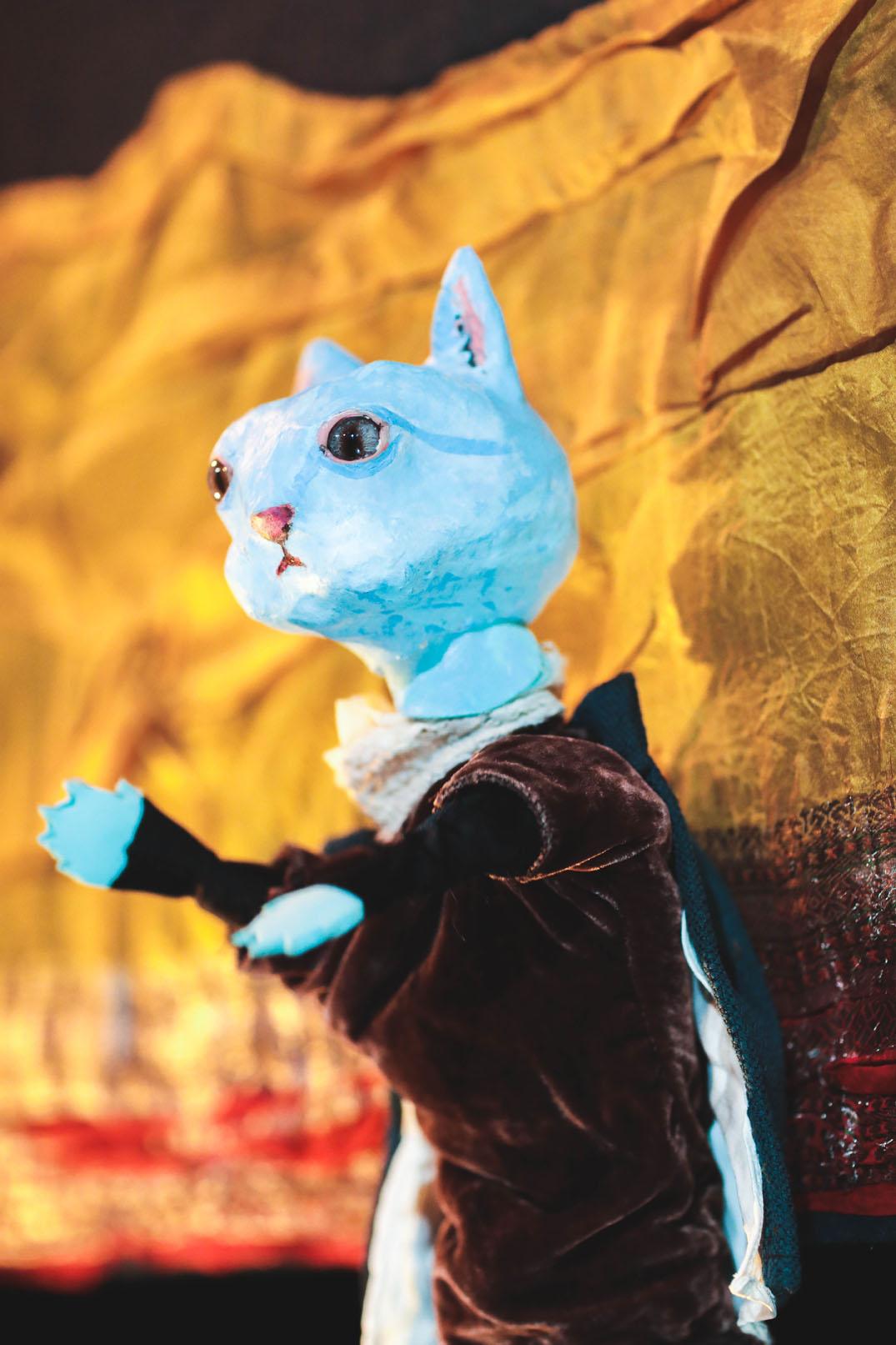 Tybalt the Cat